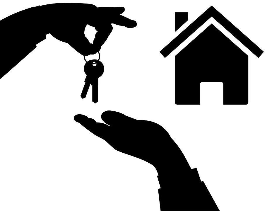 VDLF Agence immobilière