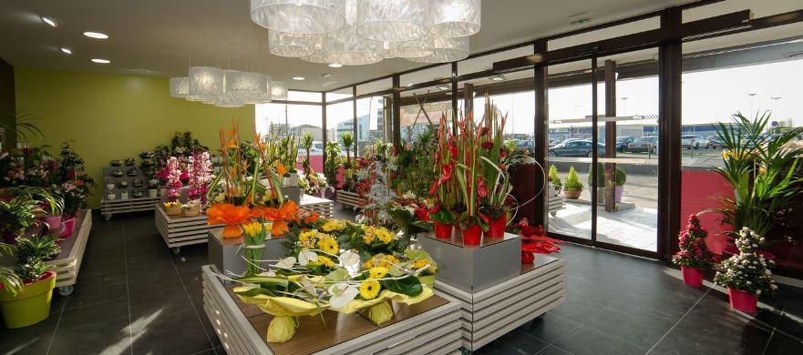 Fabuleux Franchise Carrement fleurs dans Franchise Fleurs ZU93