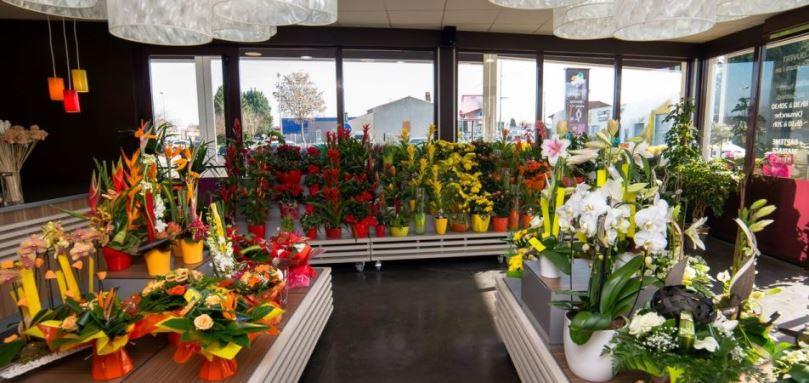 Franchise Carrement fleurs dans Franchise Fleurs