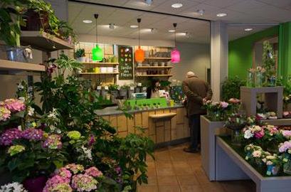 Franchise fleuriste le jardin des fleurs 30 ans de succ s - Le jardin des fleurs troyes ...