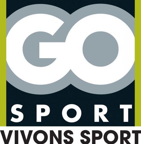 Decathlon, Intersport, Go Sport et Sport 2000 dominent le