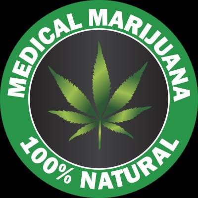 Le statut du marché légal du cannabis en France
