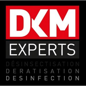 DKM EXPERTS