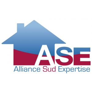 ALLIANCE SUD EXPERTISE