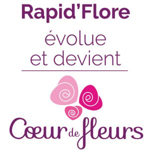 Franchise Rapid'flore / coeur de fleurs dans Franchise Fleurs Franchise Rapid'flore / coeur de fleurs dans Franchise Fleurs