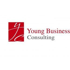 YOUNG BUSINESS CONSULTING