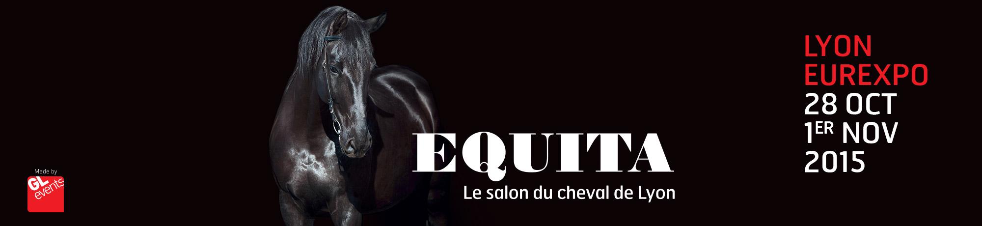La franchise husse sera prsente au salon equita de lyon for Salon des franchises lyon